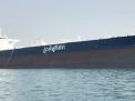"""سفن النفط السعودية في قبضة الجيش اليمني و""""اللجان الشعبية"""""""