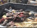 بومبيو وماتيس يدافعان عن جرائم حرب السعودية والإمارات في اليمن