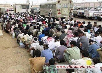قلق بشأن الوضع السيء للعمال المحتجزين في المملكة